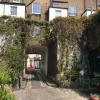 Un peu de végétation londonienne